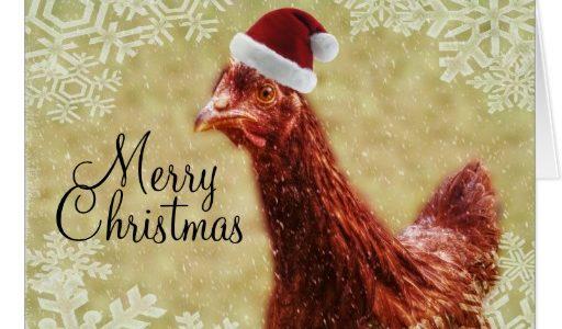 merry_christmas_winter_snowflake_santa_chicken_card-rb6fd986939b849a6bcf06ac3f8004063_xvuak_8byvr_512